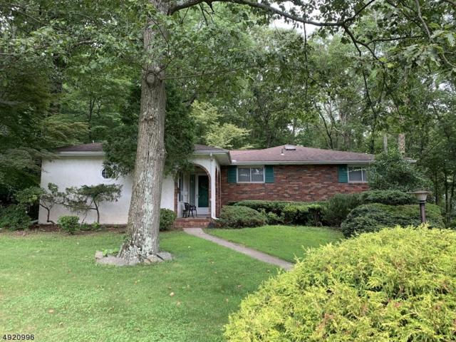 273 Ross Dr, Boonton Town, NJ 07005 (MLS #3578610) :: Weichert Realtors