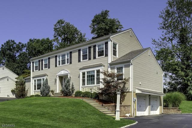 9 Valley View Dr, East Hanover Twp., NJ 07936 (MLS #3578698) :: SR Real Estate Group