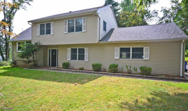 401 Rock Ave, Green Brook Twp., NJ 08812 (MLS #3578727) :: Pina Nazario