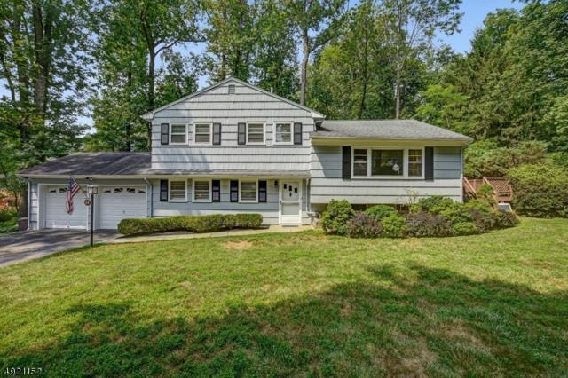 34 Grove Ave, Morris Plains Boro, NJ 07950 (MLS #3578750) :: SR Real Estate Group