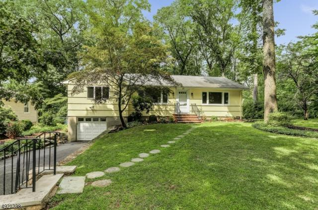 19 Dogwood Rd, Hanover Twp., NJ 07981 (MLS #3579009) :: SR Real Estate Group