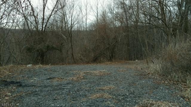 0 Macopin Rd, Bloomingdale Boro, NJ 07403 (MLS #3579281) :: William Raveis Baer & McIntosh