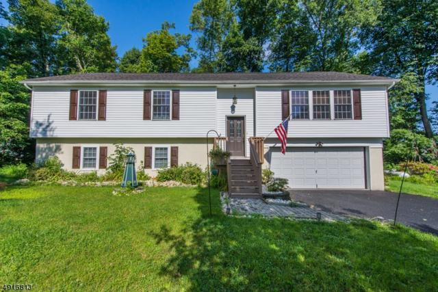 8 Irving Pl, Andover Twp., NJ 07860 (MLS #3579352) :: Mary K. Sheeran Team