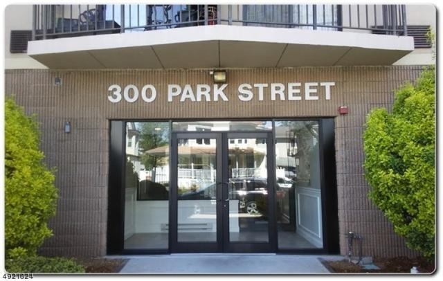 300 Park St, Hackensack City, NJ 07601 (MLS #3579383) :: SR Real Estate Group