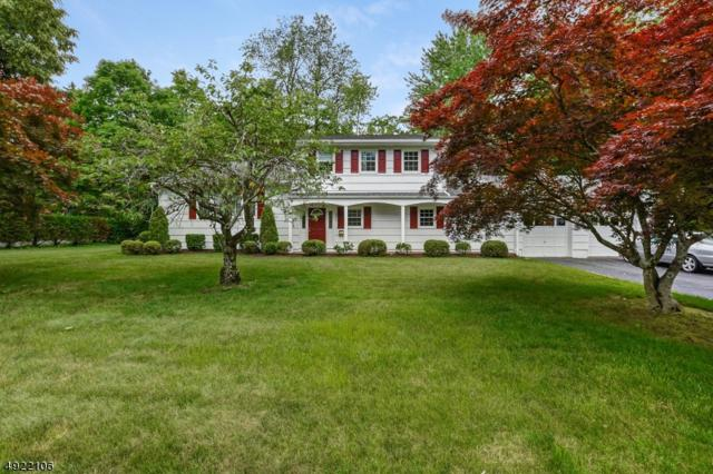 305 Runnymede Pky, New Providence Boro, NJ 07974 (MLS #3579659) :: Coldwell Banker Residential Brokerage
