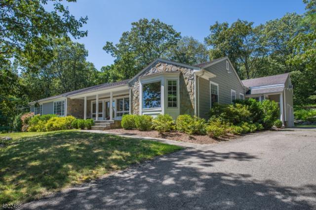 745 Ridge Rd Ter, Kinnelon Boro, NJ 07405 (MLS #3580020) :: SR Real Estate Group