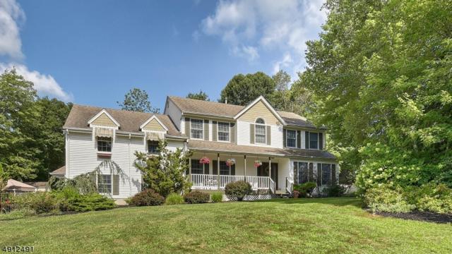 1 Lola Ct, Jefferson Twp., NJ 07438 (MLS #3580050) :: The Dekanski Home Selling Team