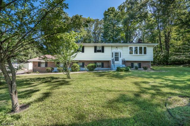41 School House Rd, Randolph Twp., NJ 07869 (MLS #3580079) :: SR Real Estate Group
