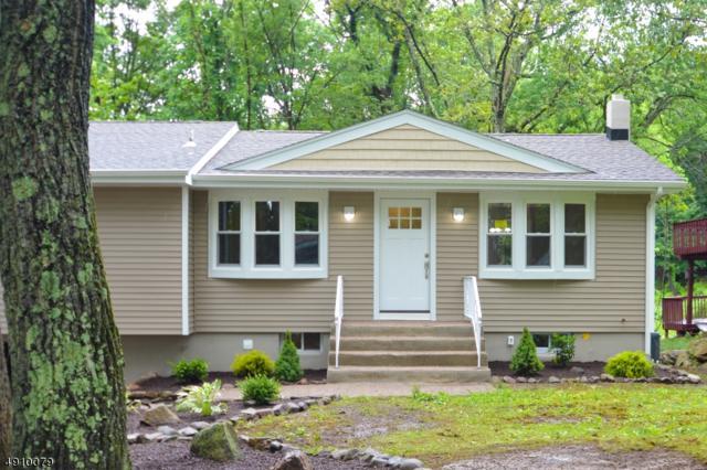 114 Valley View Dr, Rockaway Twp., NJ 07866 (MLS #3580221) :: SR Real Estate Group