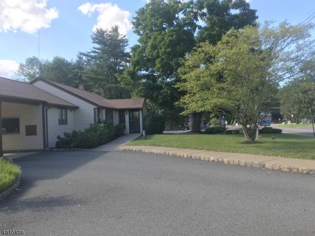 419 Hope-Blairstown Rd, Hope Twp., NJ 07844 (MLS #3580357) :: Weichert Realtors