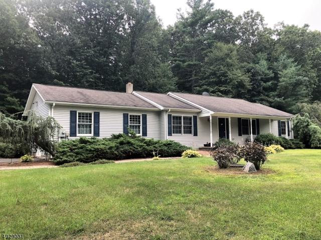 10 Chubby Ln, Montague Twp., NJ 07827 (MLS #3580487) :: Mary K. Sheeran Team