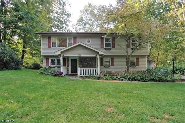 282 Lackawanna Dr, Byram Twp., NJ 07821 (MLS #3586582) :: SR Real Estate Group
