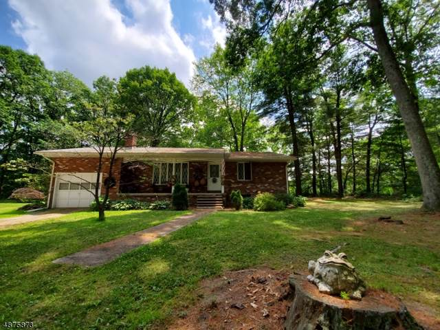41 New Mashipacong Rd, Montague Twp., NJ 07827 (MLS #3587173) :: William Raveis Baer & McIntosh