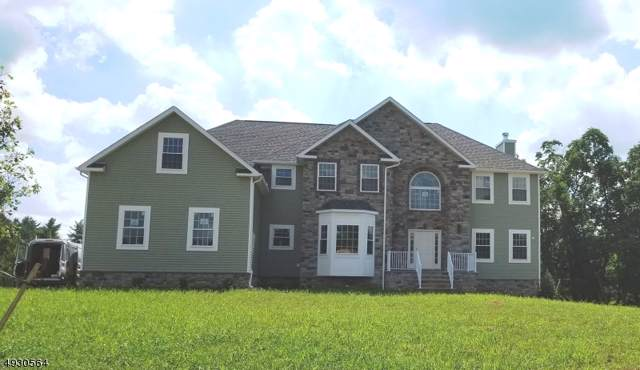 271 Shelburne Place, Hillsborough Twp., NJ 08844 (MLS #3587537) :: SR Real Estate Group
