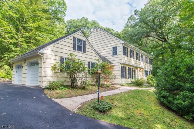 43 Mile Drive, Chester Twp., NJ 07930 (MLS #3587894) :: Mary K. Sheeran Team