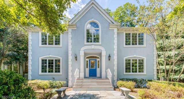 14 Crocker Mansion Dr, Mahwah Twp., NJ 07430 (MLS #3587925) :: REMAX Platinum