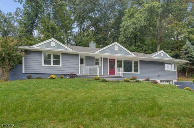 1094 Sunny View Rd, Mountainside Boro, NJ 07092 (MLS #3588194) :: Mary K. Sheeran Team