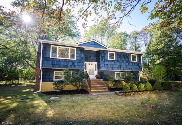 339 Otterhole Rd, West Milford Twp., NJ 07480 (MLS #3588375) :: Coldwell Banker Residential Brokerage
