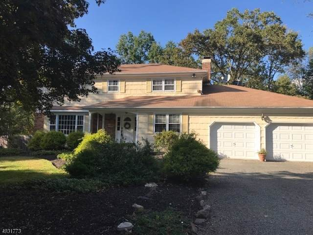 95 Cherry Brook Dr, Montgomery Twp., NJ 08540 (MLS #3588501) :: The Sue Adler Team
