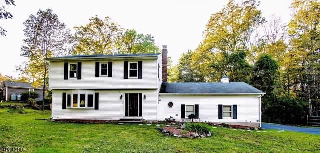 270 Newton-Swartswood Rd, Hampton Twp., NJ 07860 (MLS #3588619) :: The Dekanski Home Selling Team
