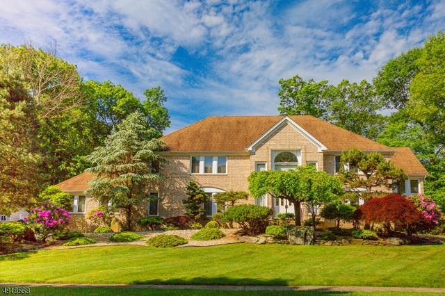 1 Manchester Dr, Denville Twp., NJ 07834 (MLS #3588636) :: Coldwell Banker Residential Brokerage
