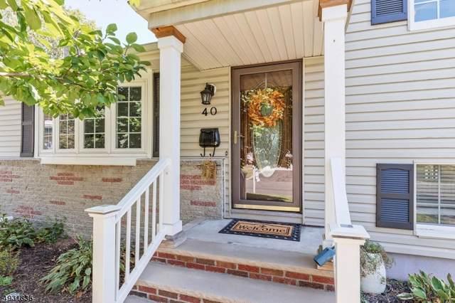 40 Arlene Ct, Fanwood Boro, NJ 07023 (MLS #3588640) :: The Dekanski Home Selling Team