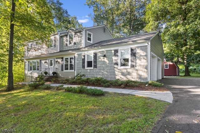 17 Carolyn Place, Washington Twp., NJ 07853 (MLS #3588646) :: Mary K. Sheeran Team