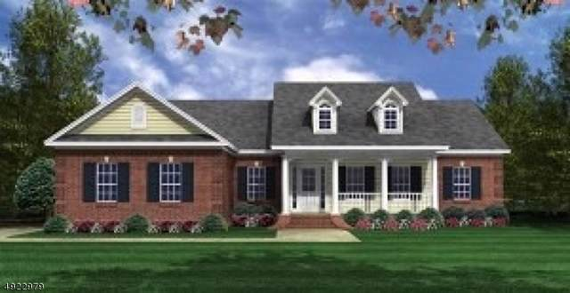 0 Cirrus Lane, Alexandria Twp., NJ 08867 (MLS #3588770) :: SR Real Estate Group