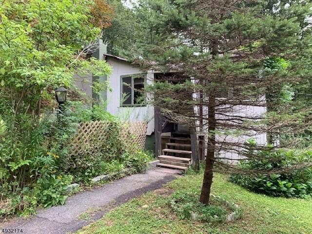 901 Chestnut Path, Stillwater Twp., NJ 07860 (MLS #3588894) :: The Dekanski Home Selling Team