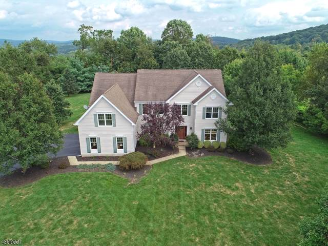 10 Kalan Farm Rd, Bethlehem Twp., NJ 08827 (MLS #3588908) :: Coldwell Banker Residential Brokerage