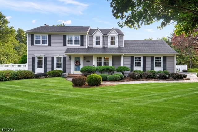 189 Carol Jean Way, Branchburg Twp., NJ 08876 (MLS #3588920) :: Coldwell Banker Residential Brokerage