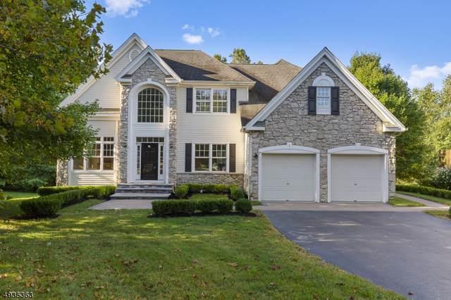 1 Harbor Town Ct, Montgomery Twp., NJ 08558 (MLS #3591900) :: SR Real Estate Group