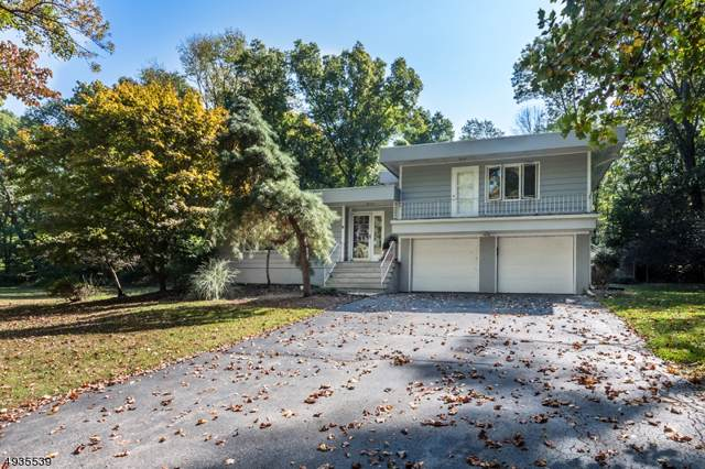 25 Cherry Tree Ln, Chester Boro, NJ 07930 (MLS #3592323) :: The Douglas Tucker Real Estate Team LLC