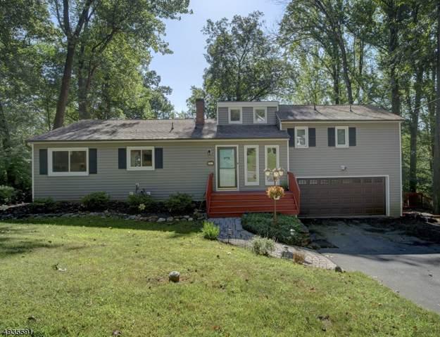 22 Freeman Ave, Denville Twp., NJ 07834 (MLS #3592376) :: SR Real Estate Group