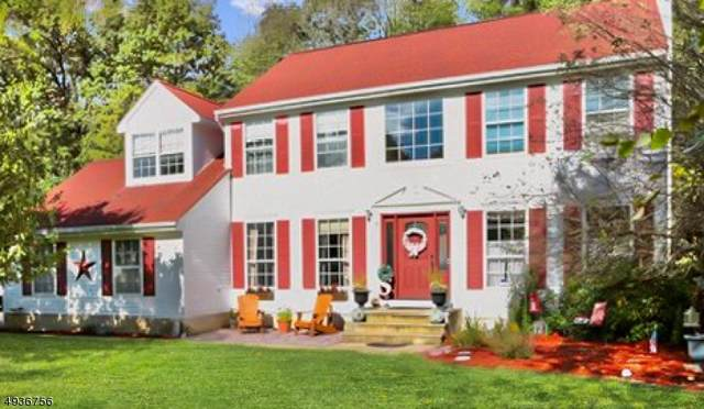 19 Autumn Dr, Mine Hill Twp., NJ 07803 (MLS #3593118) :: Coldwell Banker Residential Brokerage