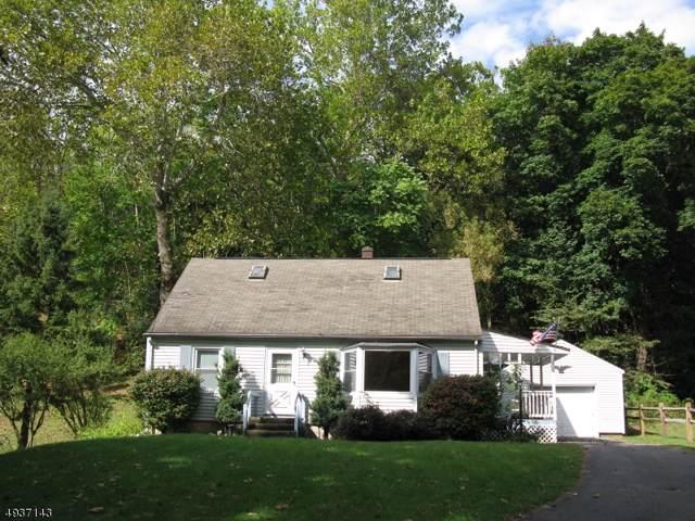 677 Water St, Belvidere Twp., NJ 07823 (#3593439) :: Jason Freeby Group at Keller Williams Real Estate