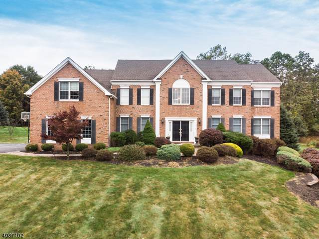 18 Sovereign Dr, Mount Olive Twp., NJ 07836 (MLS #3593522) :: The Douglas Tucker Real Estate Team LLC