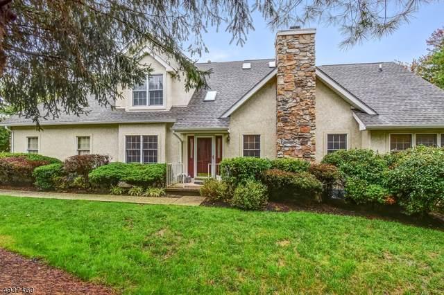 22 Georgetown Ct, Bernards Twp., NJ 07920 (#3593846) :: Jason Freeby Group at Keller Williams Real Estate