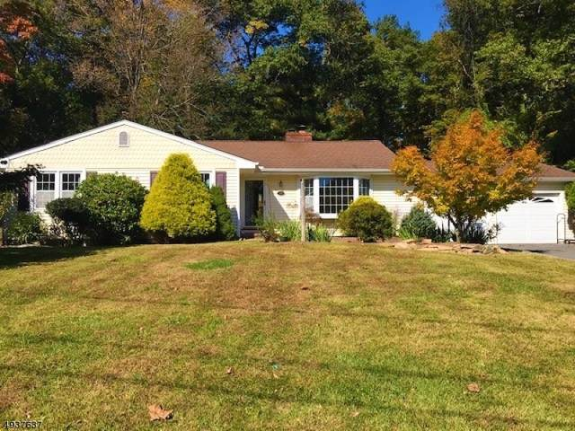 28 Hoffman Dr, Califon Boro, NJ 07830 (MLS #3593915) :: SR Real Estate Group