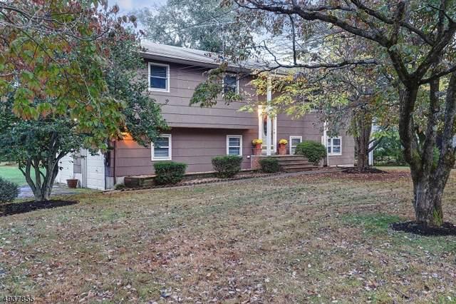 356 Woods Rd, Hillsborough Twp., NJ 08844 (#3594463) :: Proper Estates