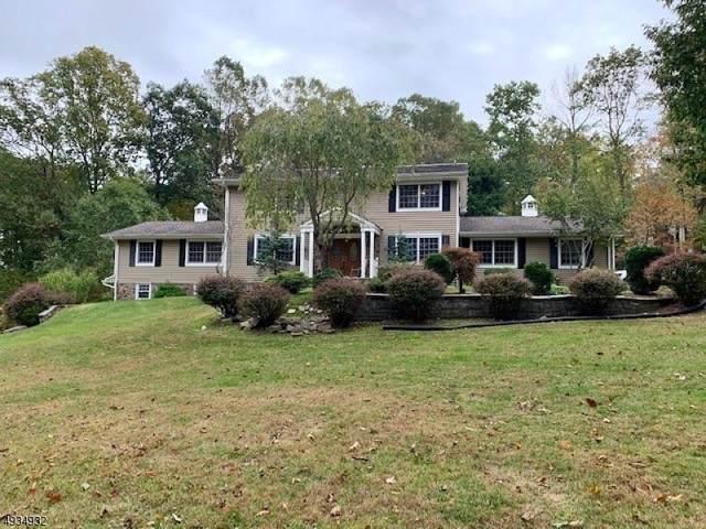 1 Deer Ct, Chester Twp., NJ 07930 (MLS #3594487) :: The Douglas Tucker Real Estate Team LLC