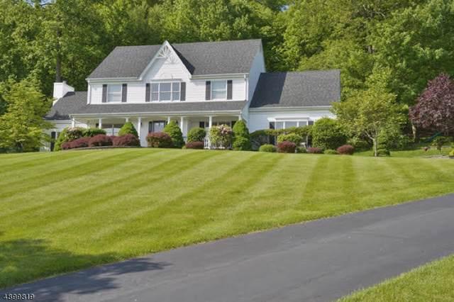 17 Scarlet Oak Rd, Raritan Twp., NJ 08822 (MLS #3594678) :: Mary K. Sheeran Team