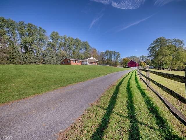1741 Raub Lane, Harmony Twp., NJ 08865 (MLS #3594698) :: Pina Nazario