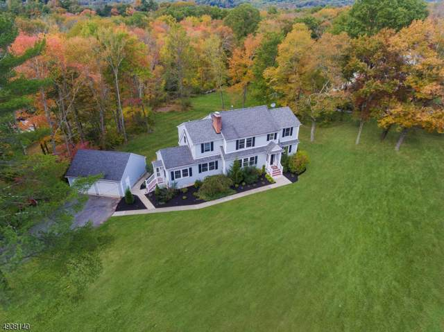 7 Doe Hill Rd, Morris Twp., NJ 07960 (MLS #3594760) :: The Douglas Tucker Real Estate Team LLC