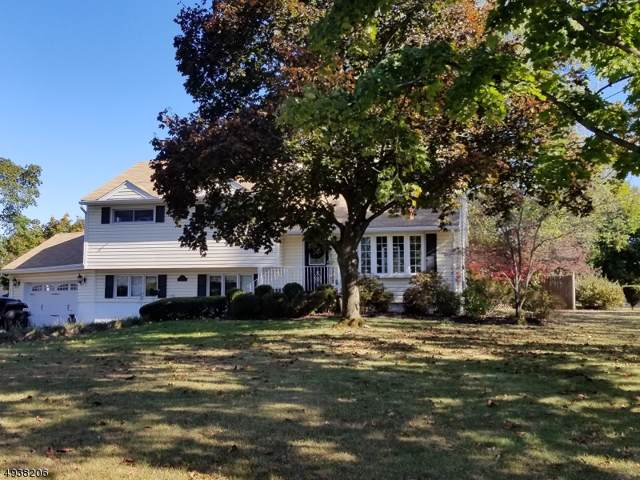 28 Frances Rd, Pequannock Twp., NJ 07440 (MLS #3594879) :: SR Real Estate Group