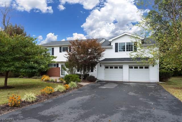 44 Meadowbrook Dr, Hillsborough Twp., NJ 08844 (#3594967) :: Proper Estates