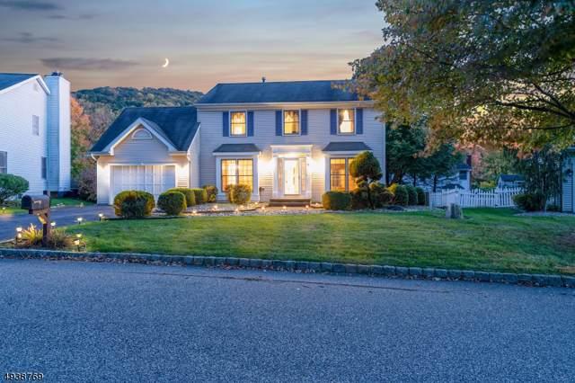 8 Deer Path, Bloomsbury Boro, NJ 08804 (MLS #3595010) :: Coldwell Banker Residential Brokerage