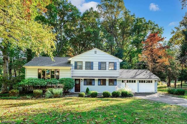 3 Hillside Court West, Morris Plains Boro, NJ 07950 (MLS #3595023) :: RE/MAX Select