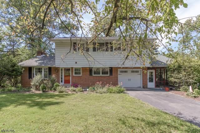 197 Bellis Rd, Holland Twp., NJ 08848 (MLS #3595043) :: SR Real Estate Group