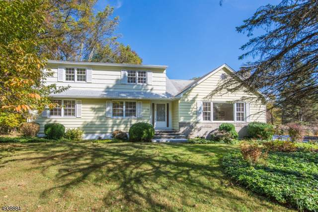 99 Everdale Rd, Randolph Twp., NJ 07869 (MLS #3595075) :: The Sue Adler Team